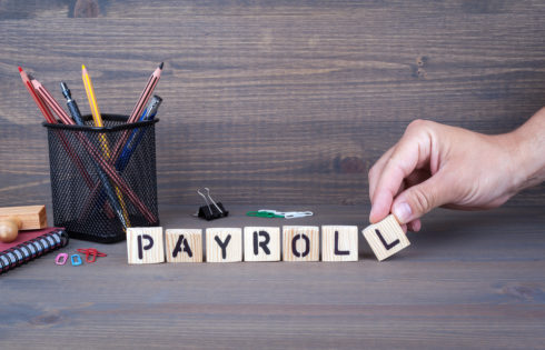 What can payroll software do?